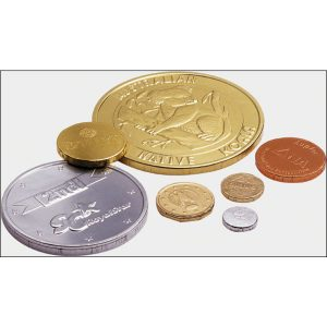 Chocolate Coin Net 26g- MCK Promotions